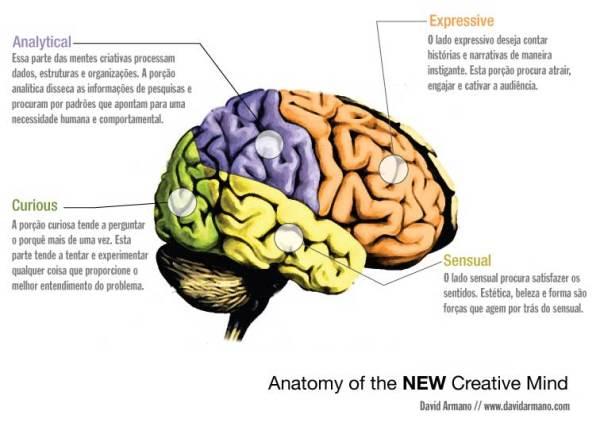 Anatomia da Mente Criativa